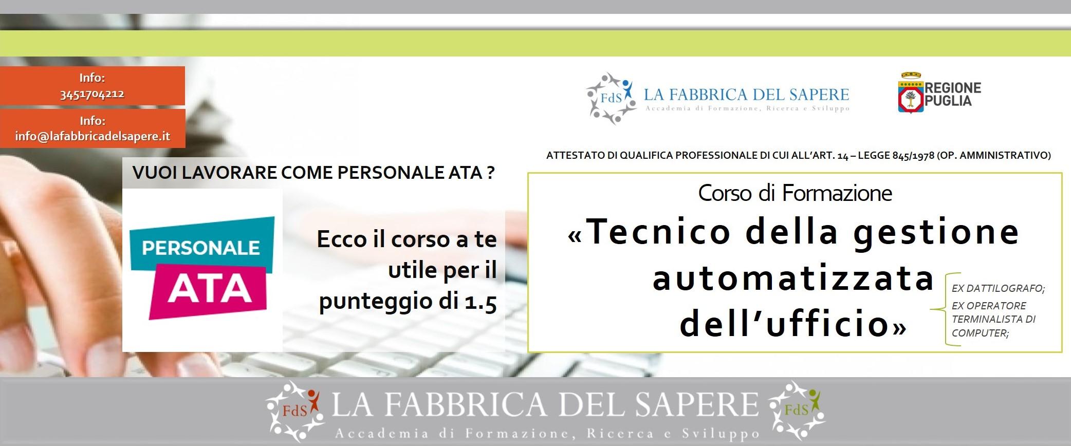 tecnico gestione automatizzata